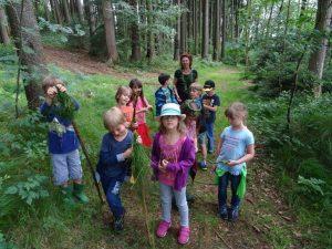 Kinder bei einer Kräuterwanderung im Wald